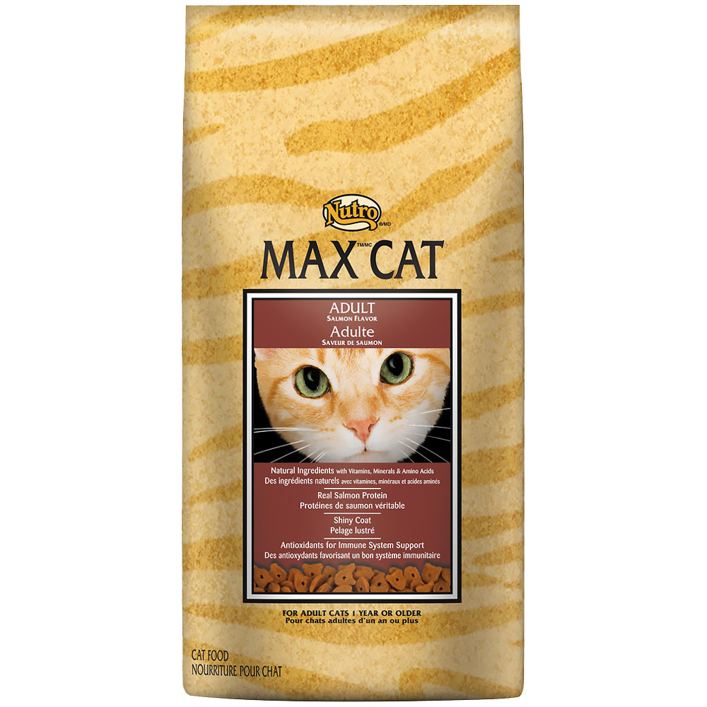 NUTRO-MAX-CAT-ADULT-SALMON-6-LB