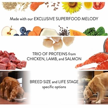 NUTRO-ULTRA-SMALL-BREED-WEIGHT-MANAGEMENT-4-LB