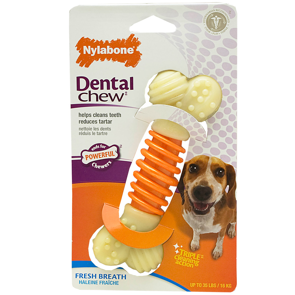 Greatest Nylabones For Your Canine 6