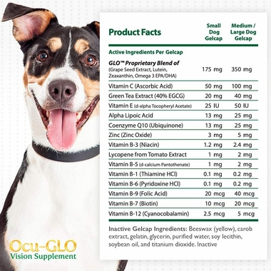 Millennial woman holding dog next to Ocu-Glo bottle and list of benefits
