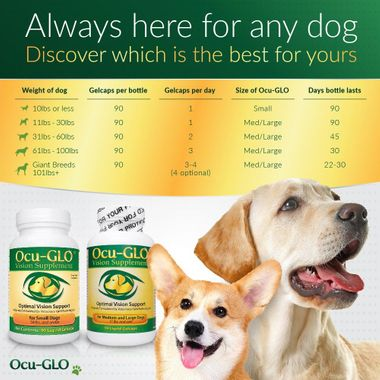 OCU-GLO-RX-FOR-SMALL-DOGS-90-GELCAPS