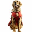 One For Pets Safety Hooded Dog Raincoat - Orange Red 18""