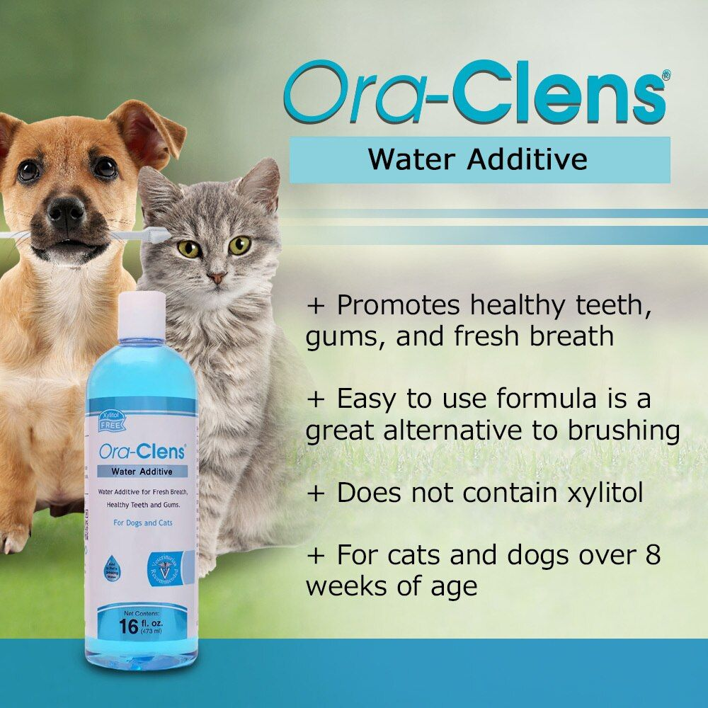 ORA-CLENS-WATER-ADDITIVE-16-OZ