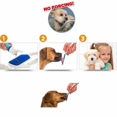 ORAPUP-BRUSH-STARTER-KIT