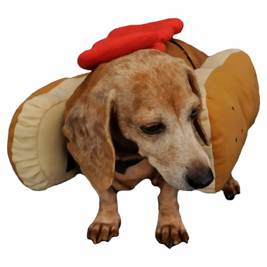 OTIS-CLAUDE-HOT-DIGGITY-DOG-COSTUME-KETCHUP-LARGE