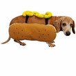 Otis and Claude Fetching Fashion Hot Diggity Dog Costume Mustard (Medium)