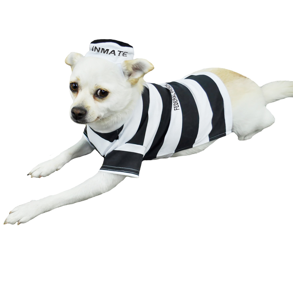 Otis and Claude Fetching Fashion Prison Pooch Costumes