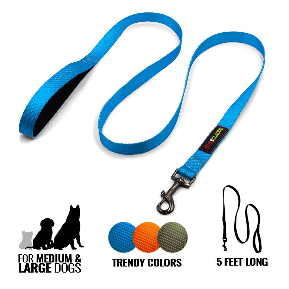 OTIS-CLAUDE-DOG-LEASH-LARGE-PRINCESS-BLUE