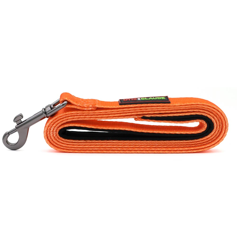 OTIS-CLAUDE-DOG-LEASH-LARGE-TURMERIC