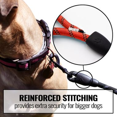 REFLECTIVE-ROPE-LEASH-RED