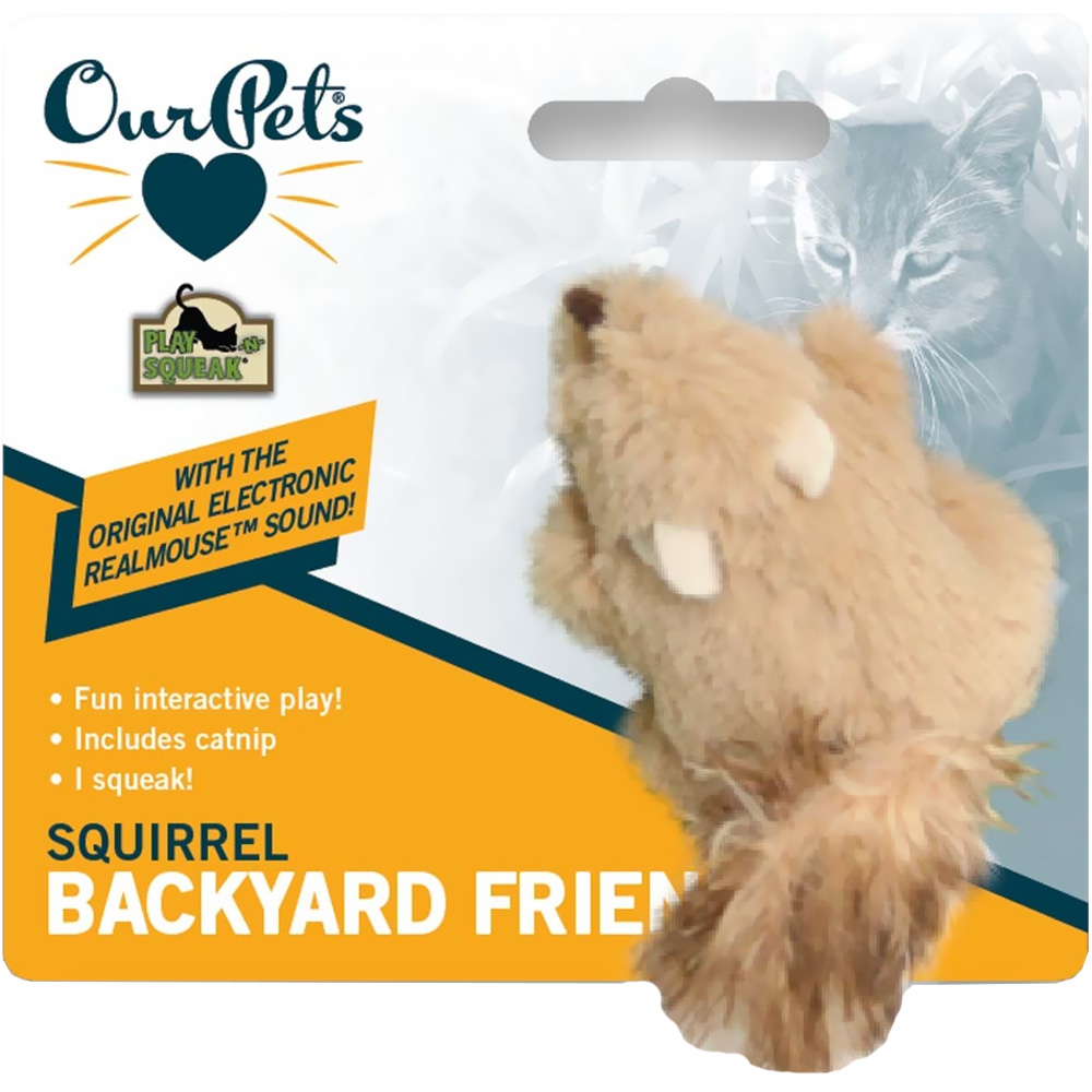 OURPETS-BACKYARD-SQUEAKING-SQUIRREL