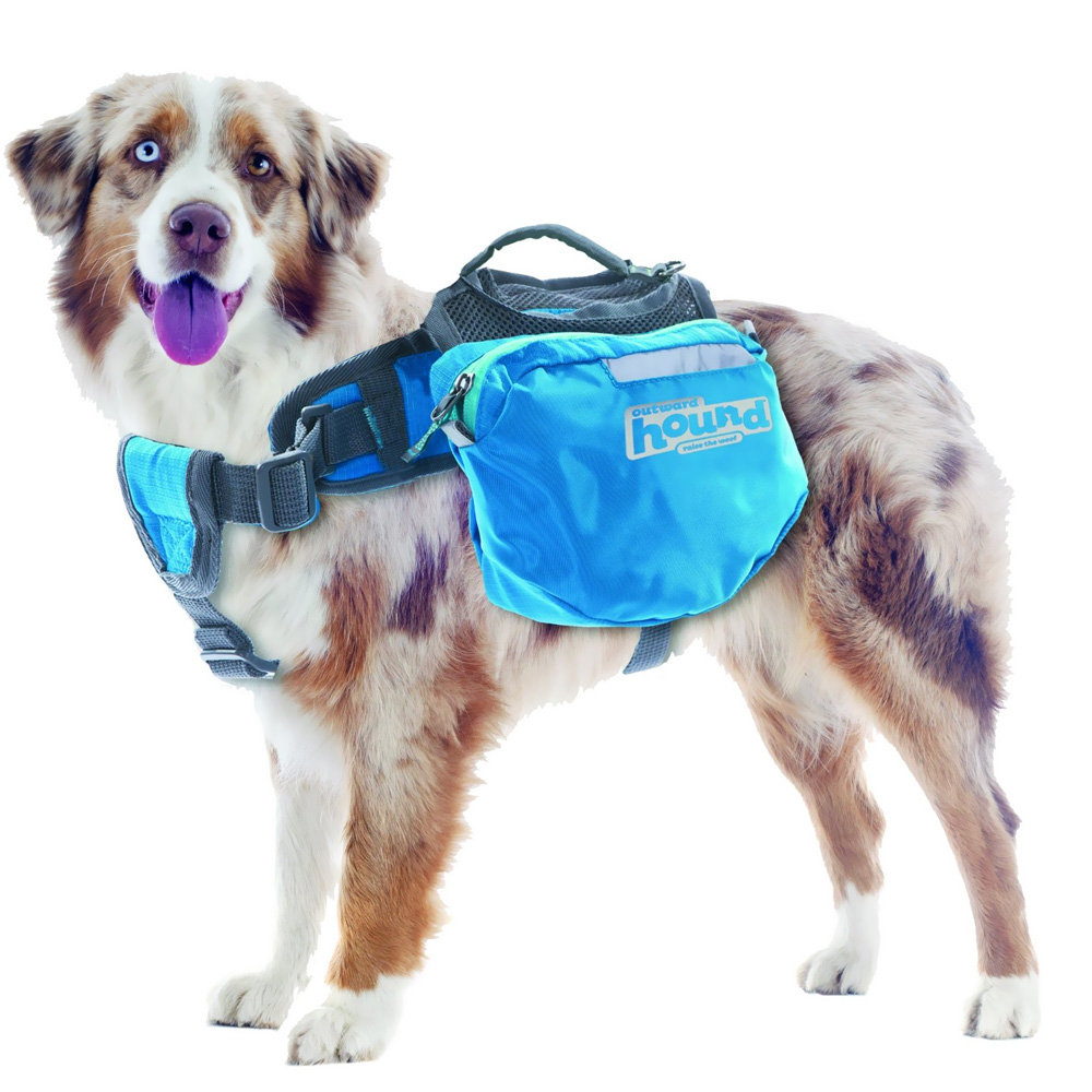 fc822e873951 Outward Hound Quick Release Dog Backpack Blue - X-Large