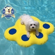 Paws Aboard Lazy Inflatable Raft