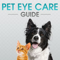 Pet Eye Care Guide