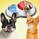 Pet Food and Nutrition Pyramid