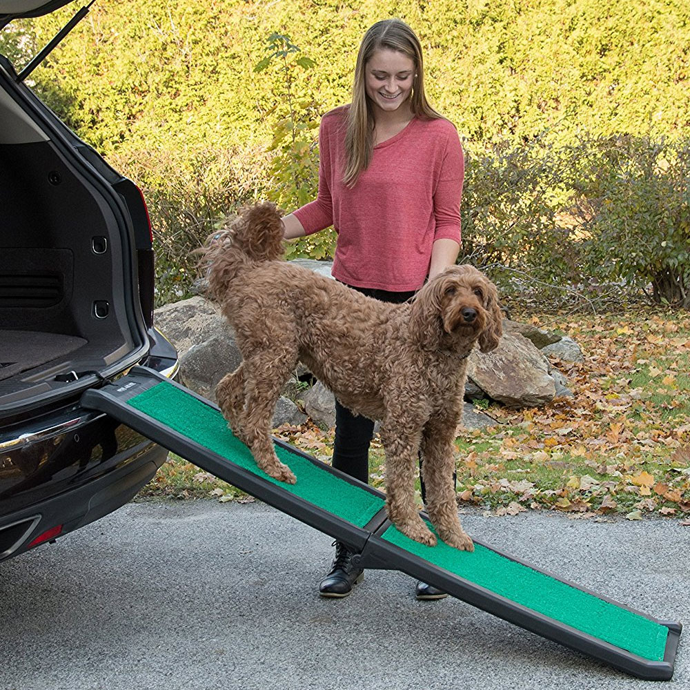 PET-GEAR-BI-FOLD-PET-RAMP-SUPERTRAX-BLACK-GREEN