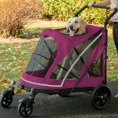 PET-GEAR-EXPEDITION-BOYSENBERRY