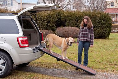 PET-GEAR-TRAVEL-LITE-TRI-FOLD-PET-RAMP-CHOCOLATE-BLACK