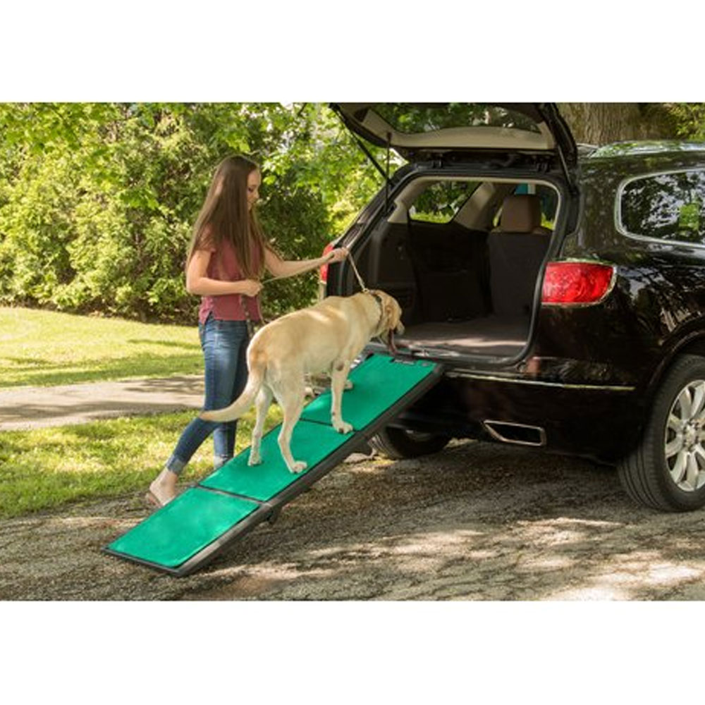 PET-GEAR-TRI-FOLD-PET-RAMP-SUPERTRAX-GREEN