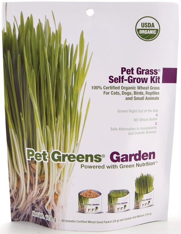 PETGREENSTREATSC