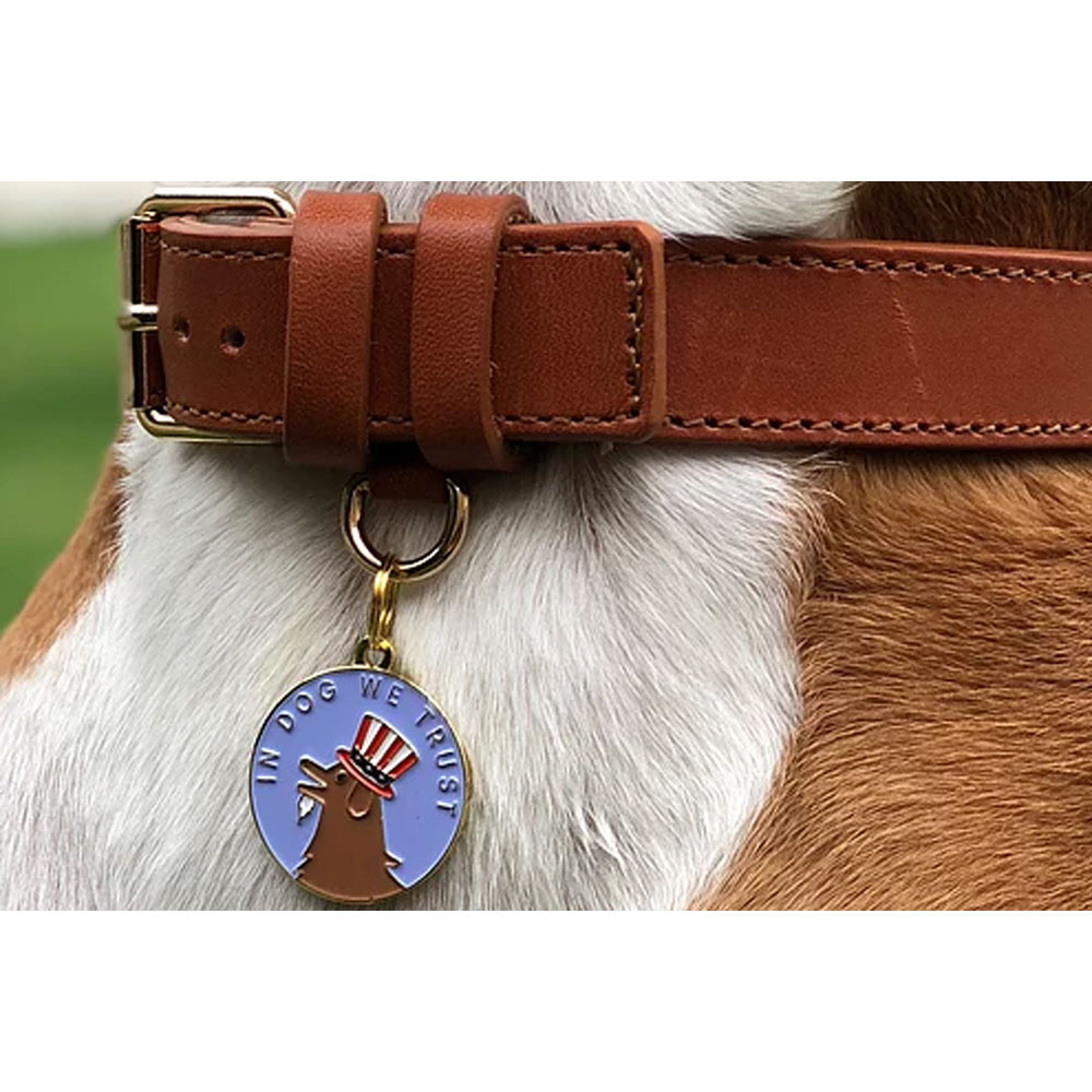 PET-ID-TAG-IN-DOG-WE-TRUST