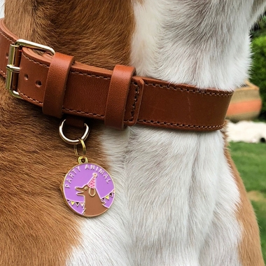 PET-ID-TAG-PARTY-ANIMAL