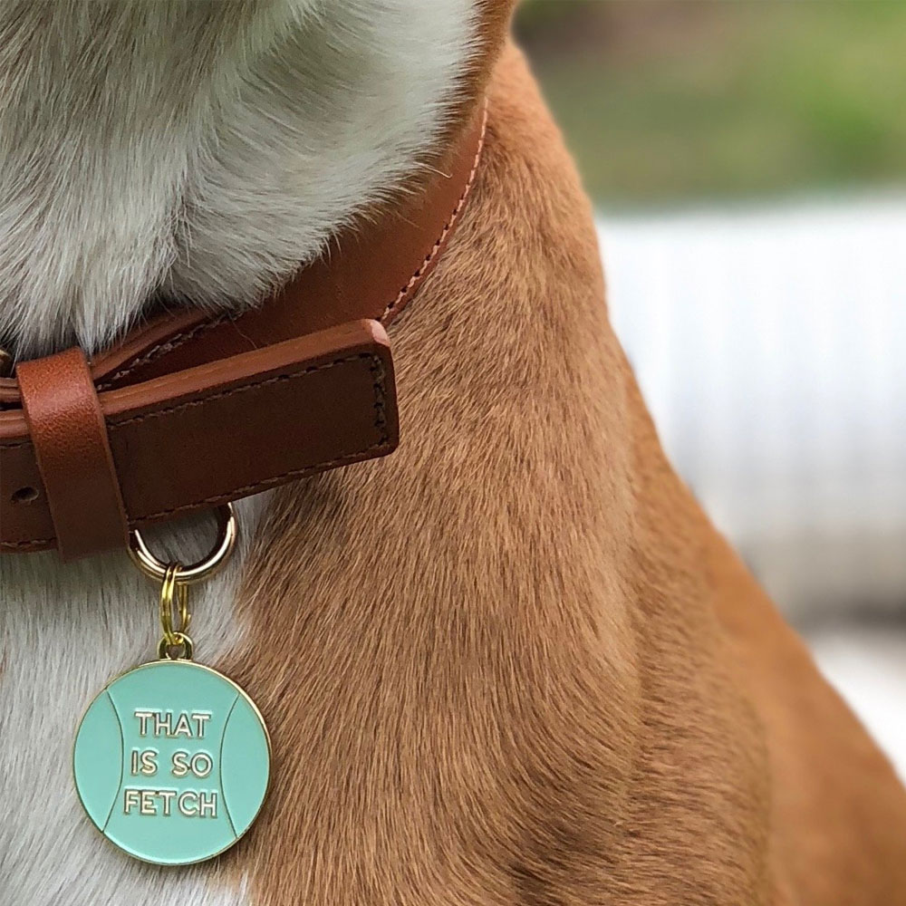 PET-ID-TAG-THAT-IS-SO-FETCH