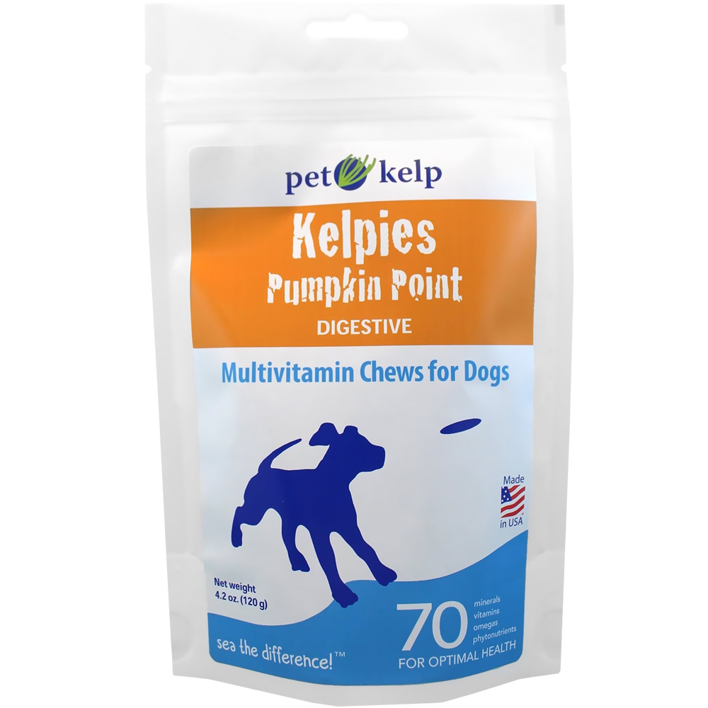 KELPIES-DIGESTIVE-PUMPKIN-POINT