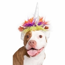 Pet Krewe Dog Unicorn Costume