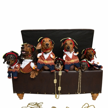 PIRATE-DOG-COSTUME-MEDIUM