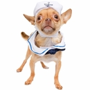Pet Krewe Sailor Cat Costume
