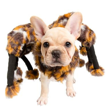 Finest Pet Halloween Costumes for Canine 1