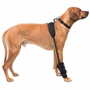 Pet Therapy Wrap with Therapy Gel - Carpal (Large)