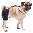 Pet Therapy Wrap with Therapy Gel - Hip (Small)