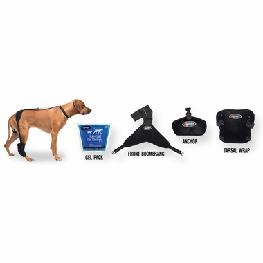 PET-THERAPY-WRAP-TARSAL-LARGE