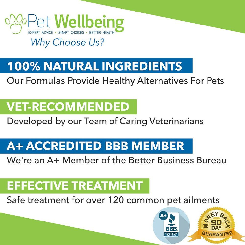 PET-WELBEING-YOUNG-AT-HEART-DOG-SUPPLEMENT-2OZ