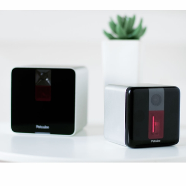 PETCUBE-INTERACTIVE-WI-FI-PET-CAMERA