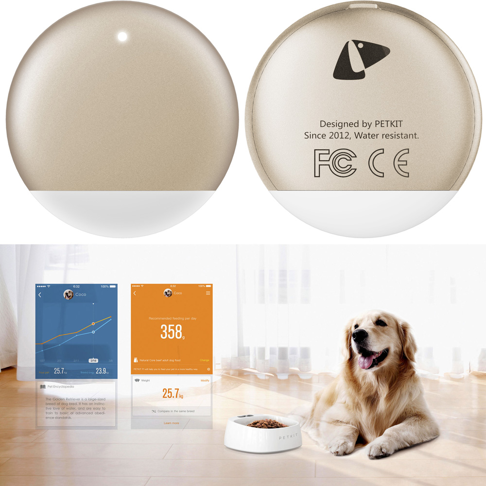 PETKIT-SMART-MONITORING-PET-TRACKER-GOLD
