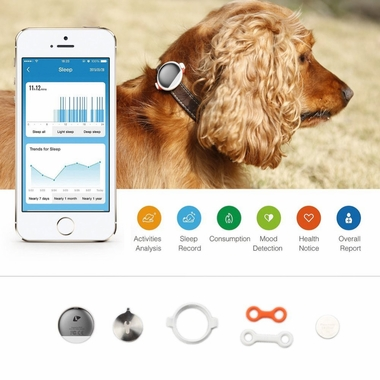 PETKIT-SMART-MONITORING-PET-TRACKER-RED