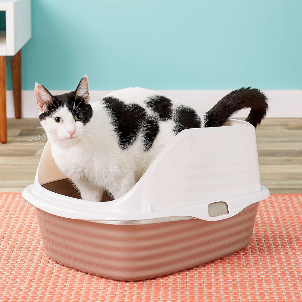 PETMATE-CAT-LITTER-PAN-LARGE