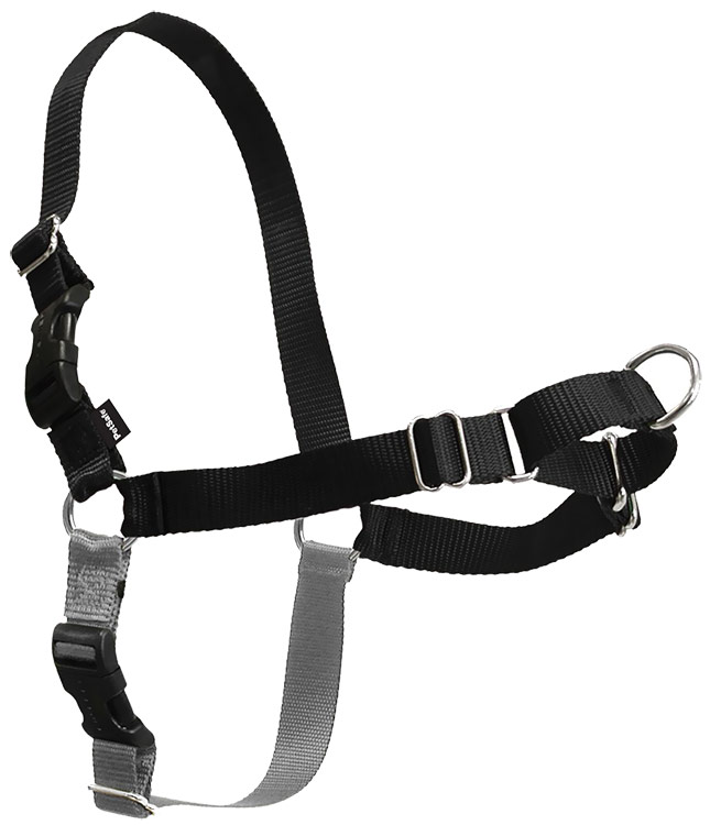 Image of PetSafe Easy Walk Harness - Black/Silver