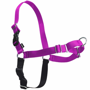 PETSAFE-EASY-WALK-HARNESS-SMALL-RASPBERRY