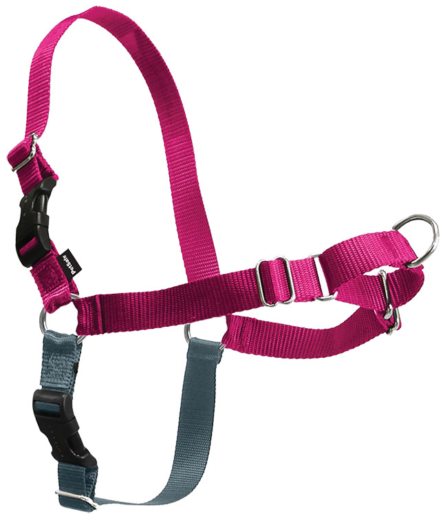 PETSAFE-EASY-WALK-HARNESS