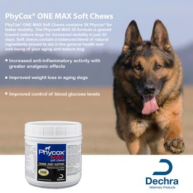 Older adult german shephard facing camera next to phycox max soft chew container and list of benefits