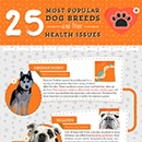Popular Dog Breeds And Their Health Issues