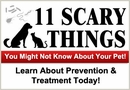 Prevent & treat diseases that pets transfer to humans | EntirelyPets