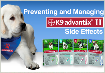 Preventing and Managing K9 Advantix II Side Effects