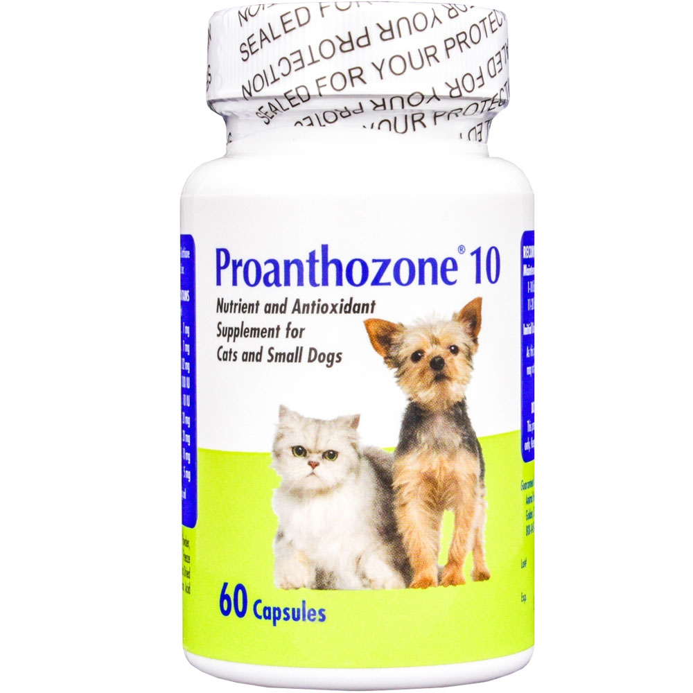 http://www.entirelypets.com - Proanthozone 10mg for Cats and Small Dogs 60 Caps 16.99 USD