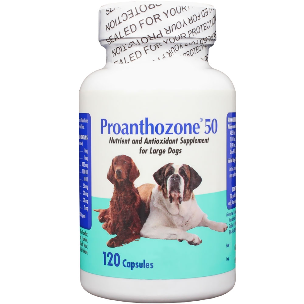 http://www.entirelypets.com - Proanthozone 50mg for Large Dogs (120 Caps) 49.99 USD
