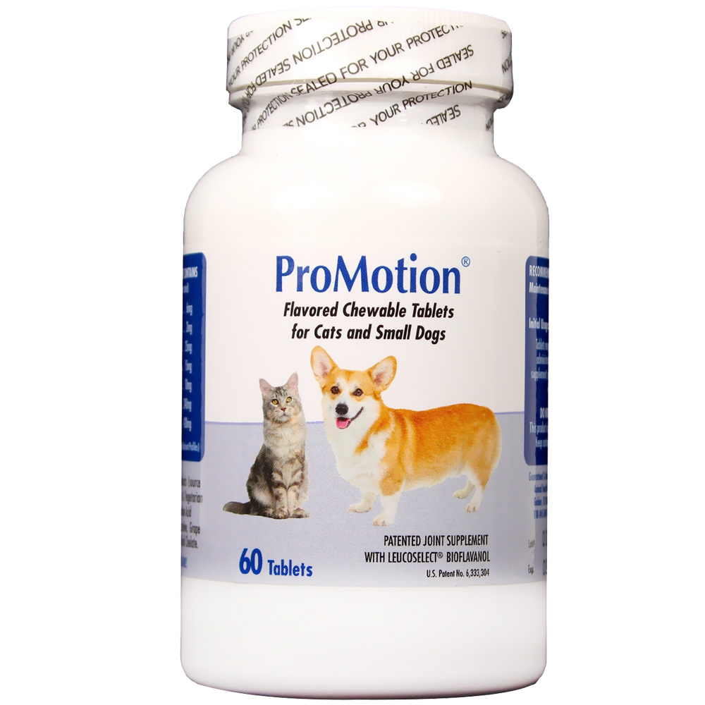 ProMotion for Small Dogs/Cats (60 tablets) im test